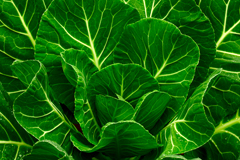 Boost calcium by eating leafy greens – kale, Swiss chard, turnip greens.