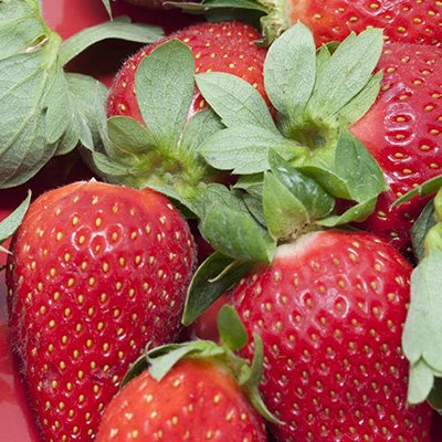 High angle close up of a plate of whole juicy ripe red strawberries with attached green stems