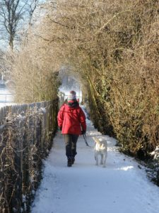 a woman walking with a dog in the snow
