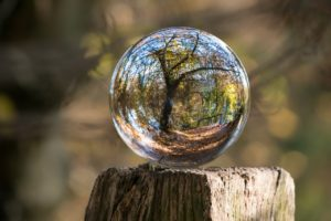 Clear sphere with tree reflection